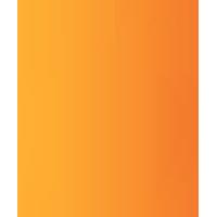 icon-bolt
