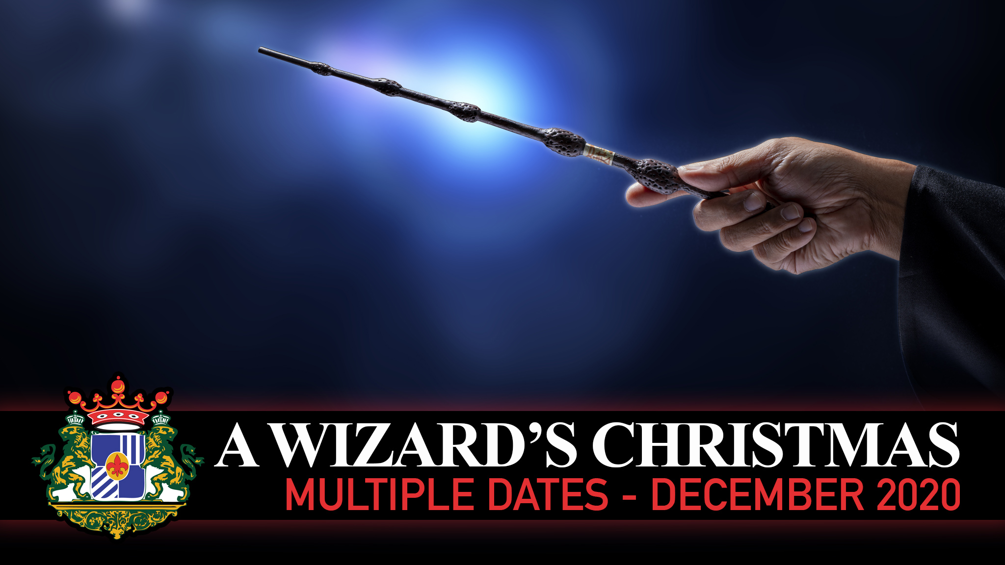 A Wizard Christmas